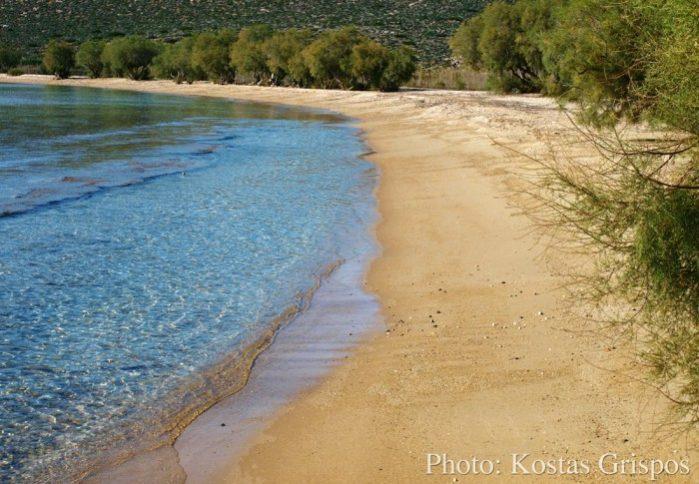psaralyji praia