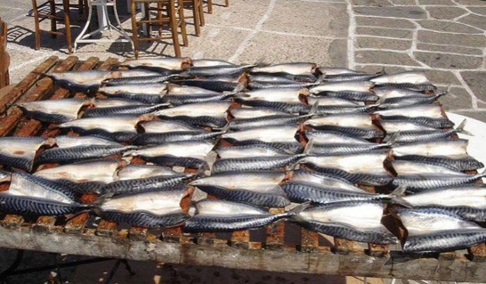 paros peixa